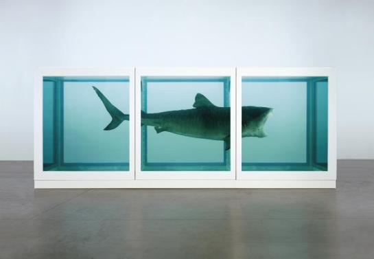 thephysicalimpossibiltyofdeath_art_damienhirst